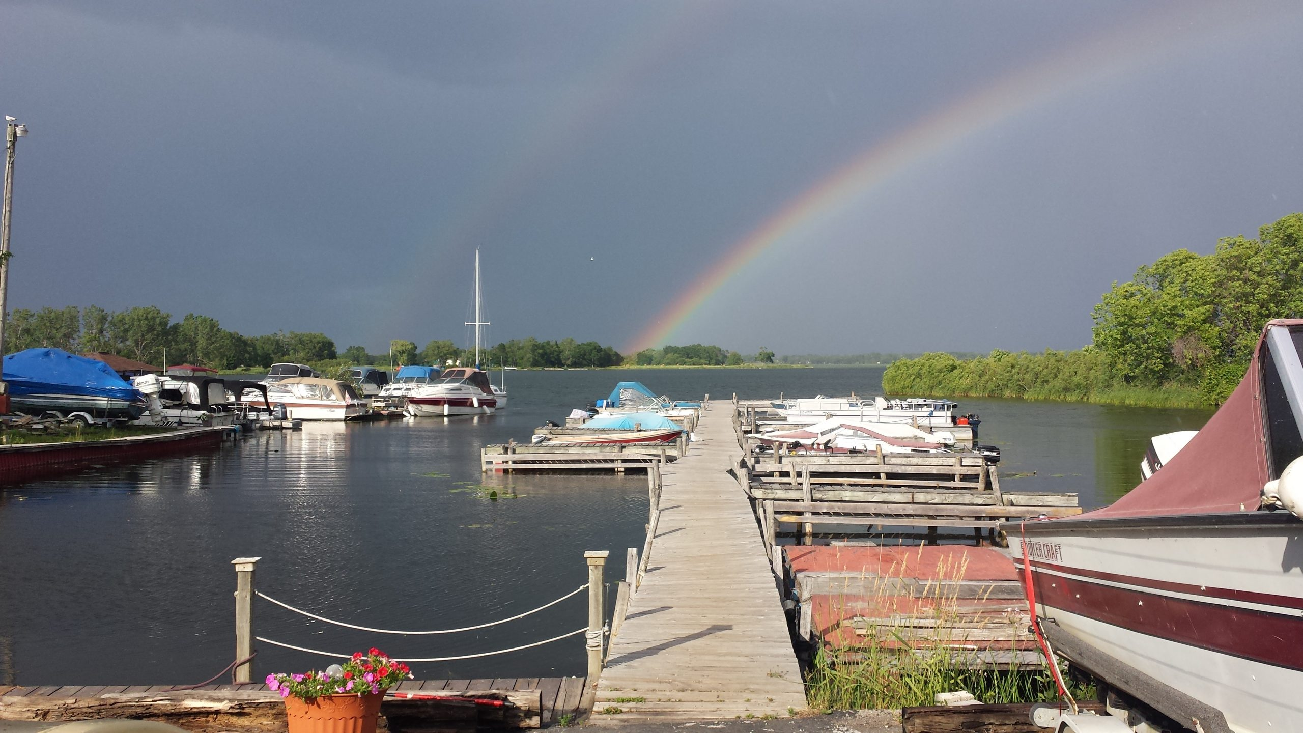 Wellers Bay, rainbow, marina, flowers