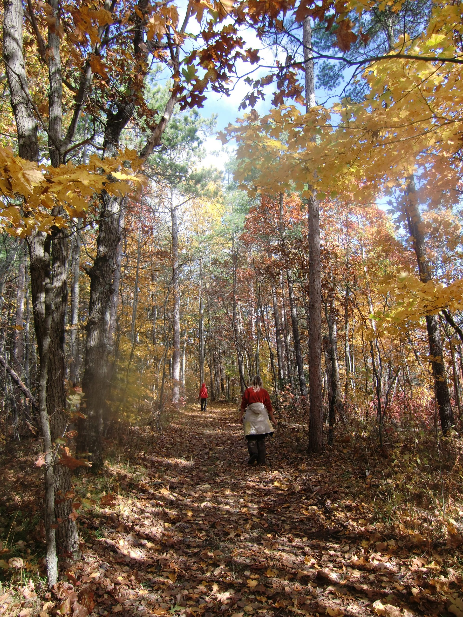 Fall, hiking, leaves turning, Fall Colours, fall colors,